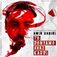 آهنگ امین حبیبی تو دنیامو عوض کردی Amin Habibi - To Donyamo Avaz Kardi