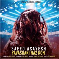 دانلود آهنگ سعید آسایش یواشکی ناز کن Saeed Asayesh - Yavashaki Naz Kon